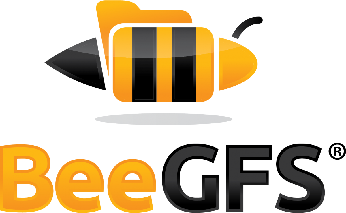 Introducing the BeeGFS Parallel File System
